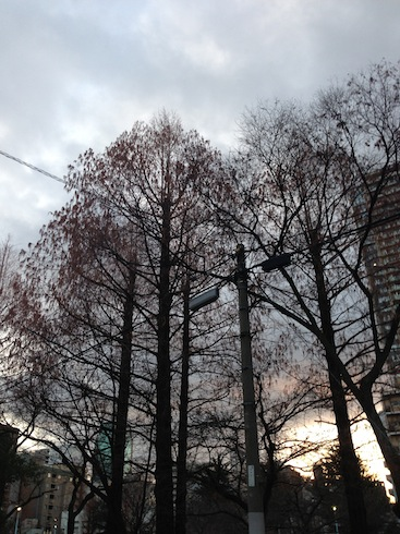 2013年大寒祭り&サロン改装その2&2月イベント!!_c0187025_22441882.jpg