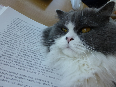 愛玩動物飼養管理士_e0237625_22233120.jpg