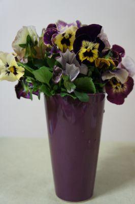 花を楽しむ_f0155431_21331945.jpg