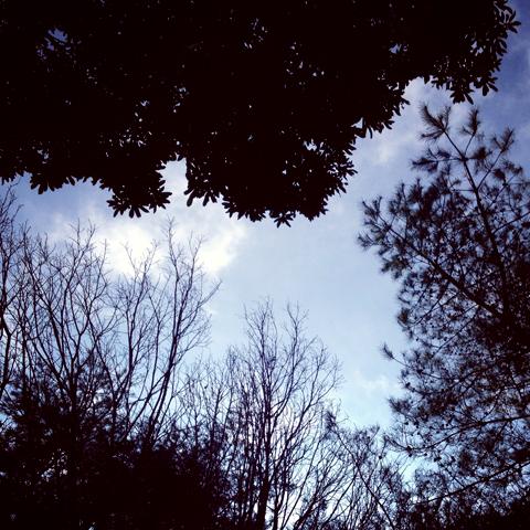 ある日、公園にて_e0131432_11285381.jpg