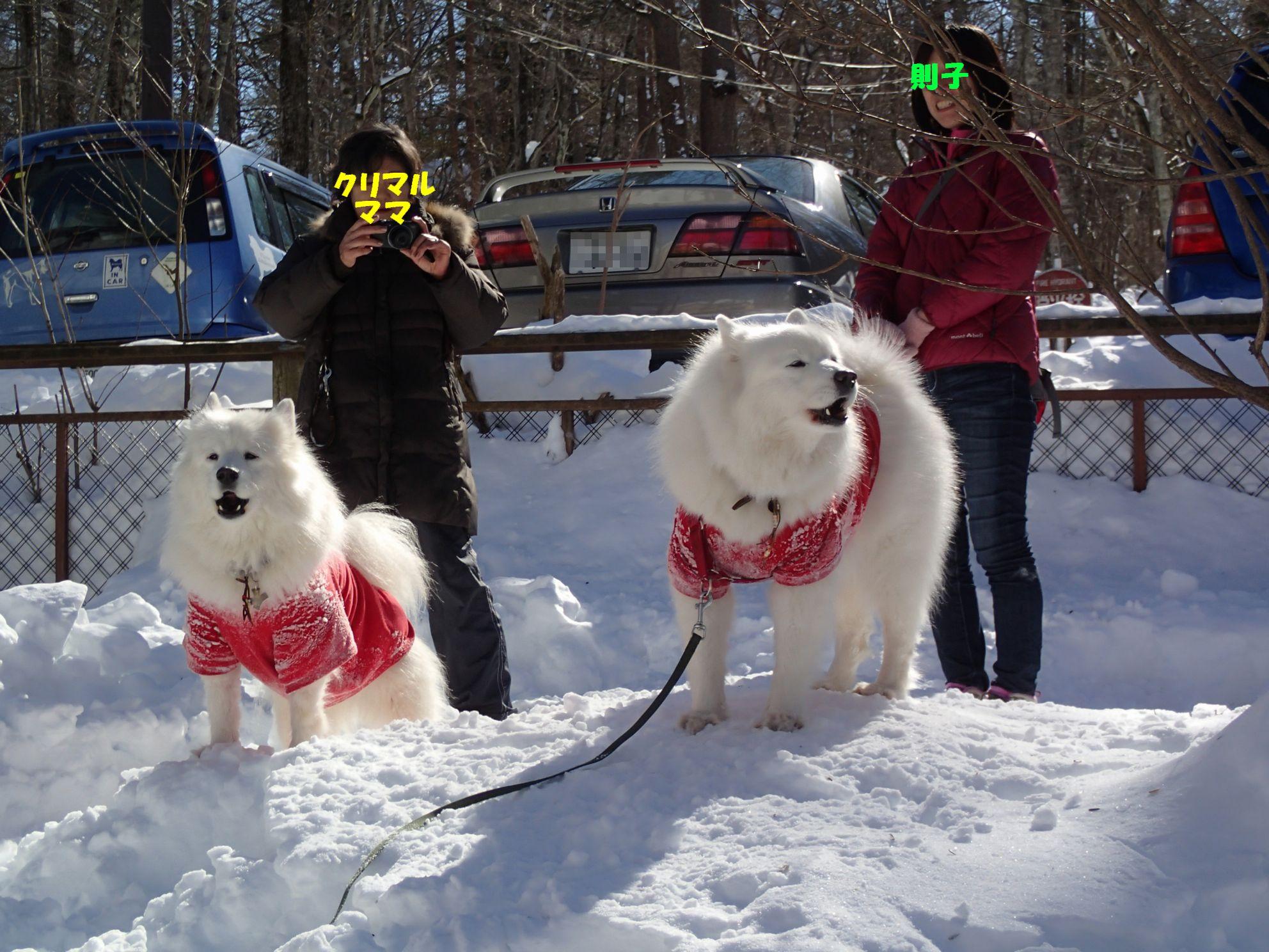初めての雪遊び (後編)_f0128542_1118249.jpg