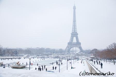 寒そうなパリたち_c0024345_2273549.jpg