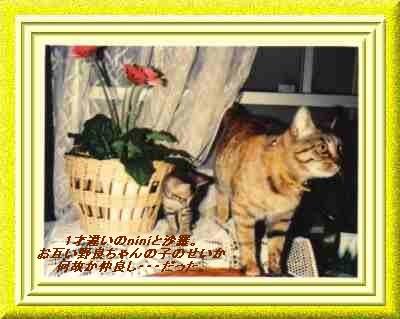 b0078675_19541995.jpg