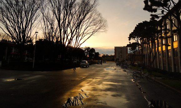 外に出るとすっかり雨もあがり....湖山池の向うにいい感じの夕日が......_b0194185_23374684.jpg