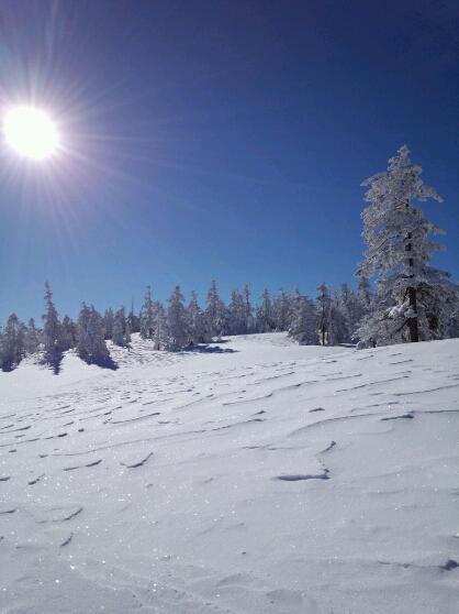 太陽と雪の風紋_f0069815_10125184.jpg