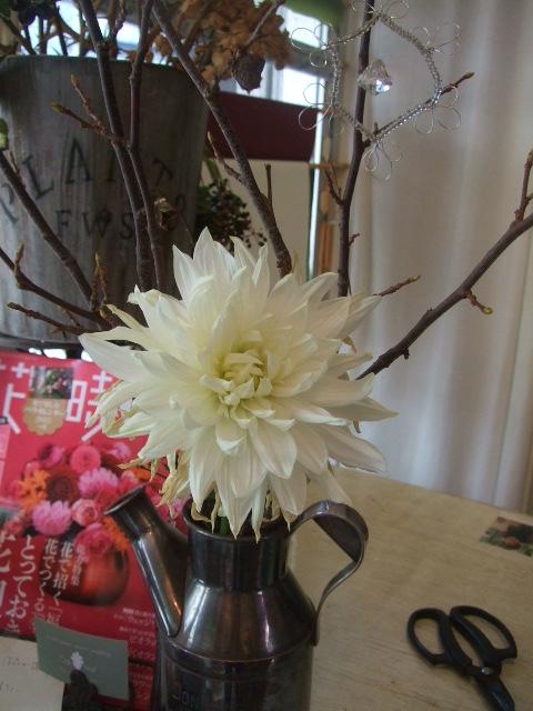 オークリーフ(お出迎えの花たち)_f0049672_17474217.jpg
