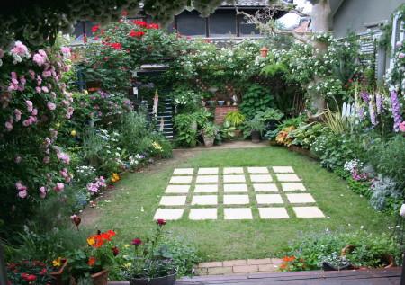 ◆裏庭のバラの誘引がほぼ終了・・・・・_e0154682_23574983.jpg