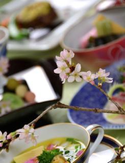 一足早く咲いた春の花と美味しそうな春の料理...._b0194185_22554480.jpg