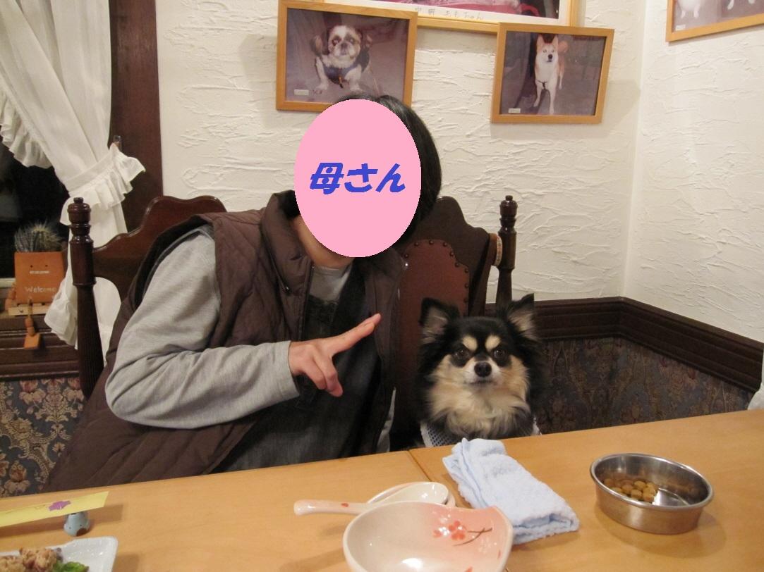 b0150088_1710142.jpg