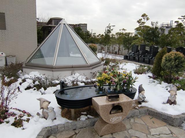 雪から一転して、、、_b0263390_1334831.jpg