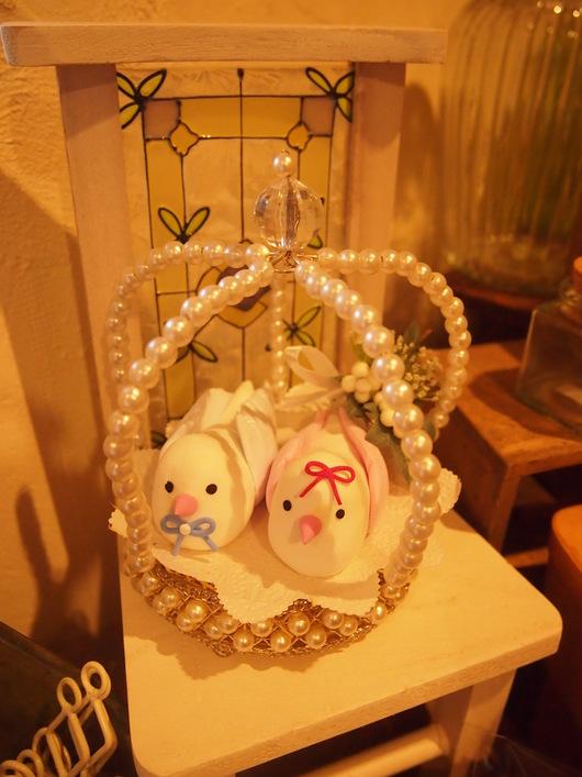 小鳥ちゃん♡_a0230197_17485395.jpg