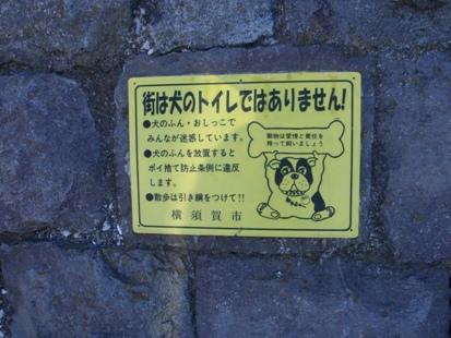 街は犬のトイレ_e0077899_710072.jpg
