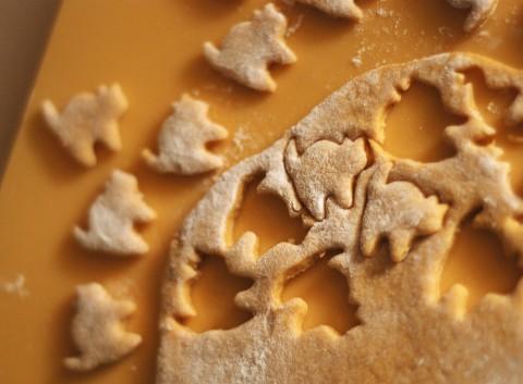 ネコ用の手作りおやつクッキー_b0253205_1693924.jpg