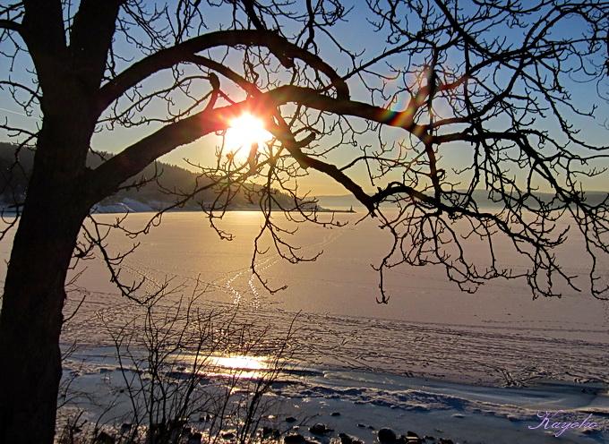 凍った海の上の散歩_a0086828_131596.jpg