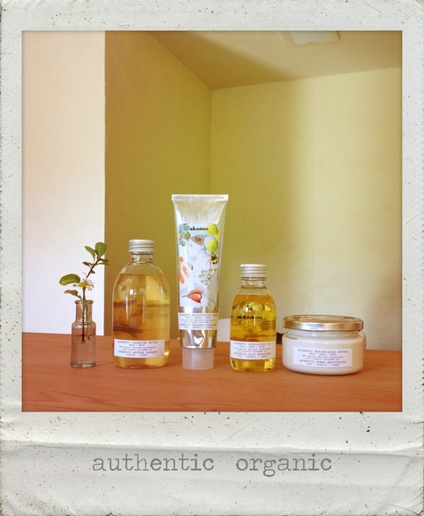 davines authentic_d0280229_14352249.jpg