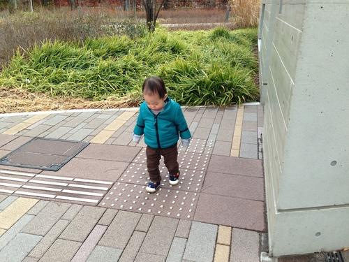 赤ちゃんホイホイ_a0267942_18314599.jpg