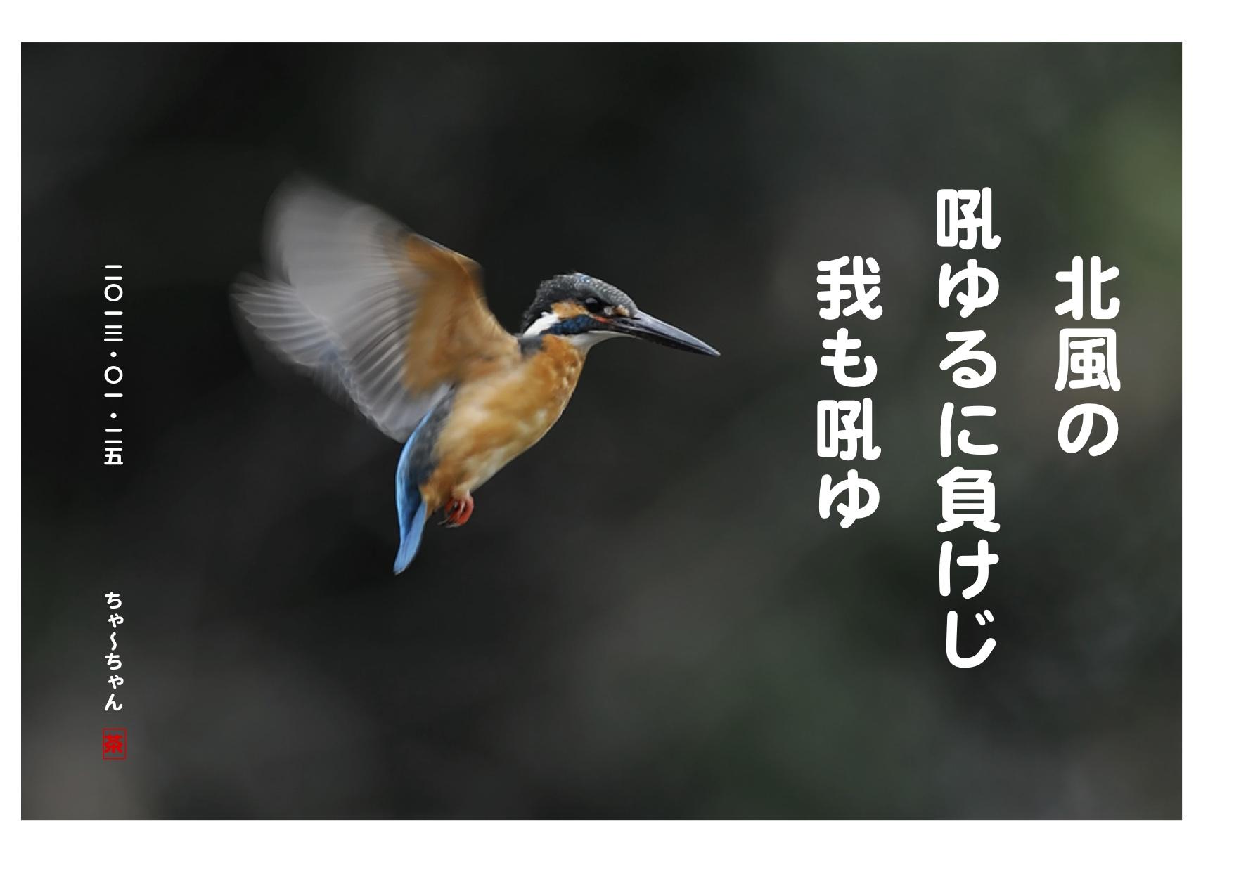 b0142158_1252450.jpg