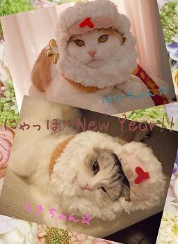 2013年もよろしくね♪&バースデーイベントのお知らせ☆_d0174765_176963.jpg
