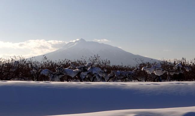 霧氷の朝、岩木山など_a0136293_16151710.jpg