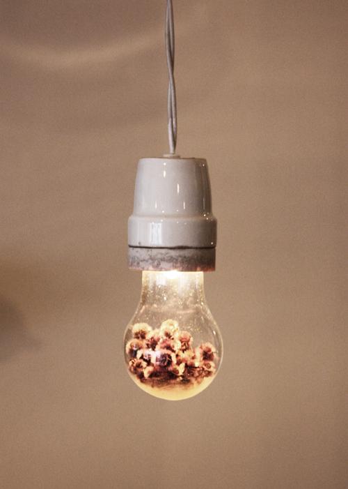 『Poésie Lampe』_f0192906_17355259.jpg