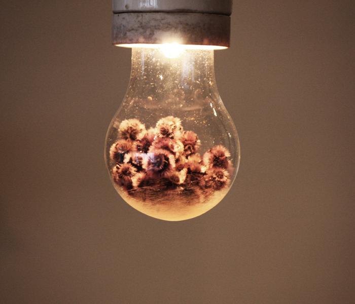 『Poésie Lampe』_f0192906_17361962.jpg