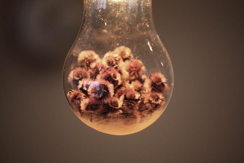 『Poésie Lampe』_f0192906_17363125.jpg