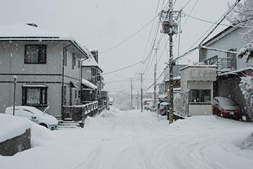 雪の日の朝帰り_b0259218_1155676.jpg