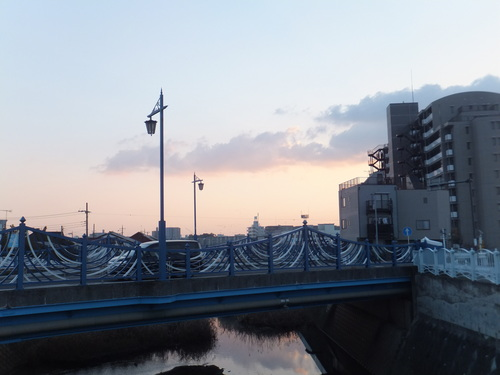 水鳥は寒くても元気.....河川散歩!_b0137932_912293.jpg