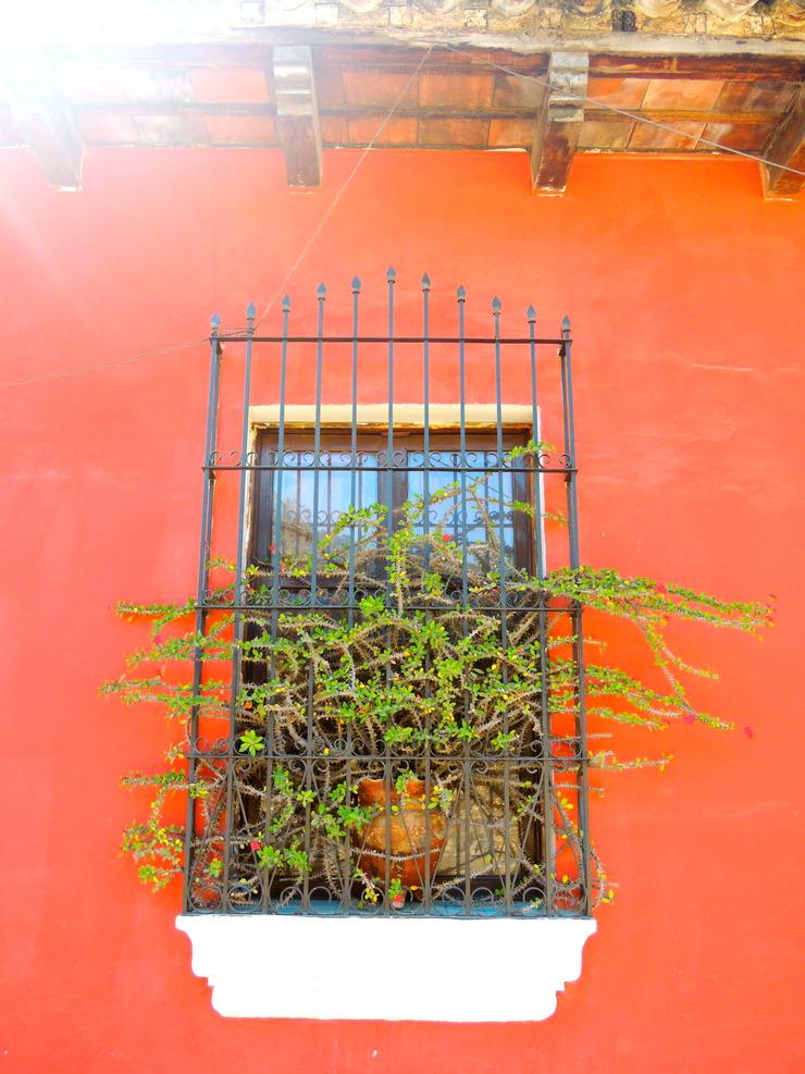 Guatemala @ Central America._a0171939_10414233.jpg