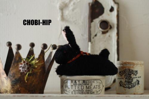 chobi-hipです。_f0238042_1762058.jpg