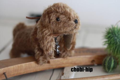 chobi-hipです。_f0238042_1765313.jpg
