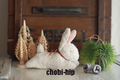 chobi-hipです。_f0238042_176567.jpg