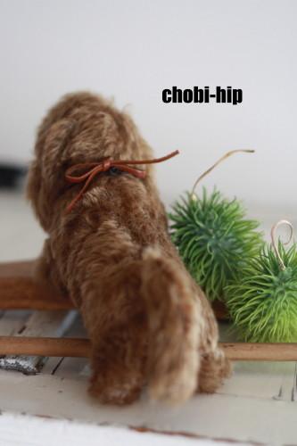 chobi-hipです。_f0238042_177884.jpg