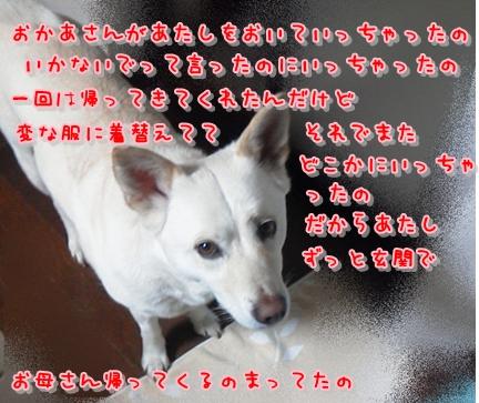 f0195543_22171130.jpg