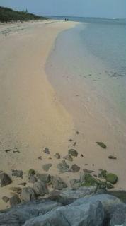 日帰りで、更に離島へ。_b0124144_20245575.jpg