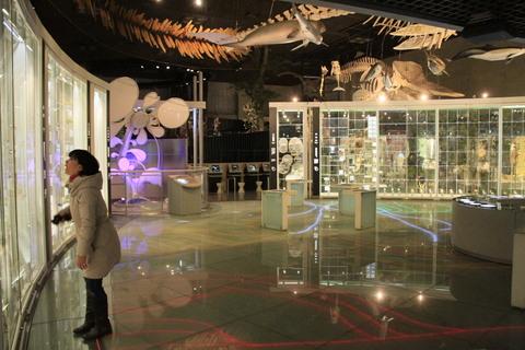 ナイトミュージアム_c0187449_19315261.jpg