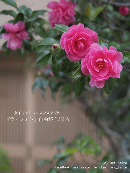 f0212049_0121232.jpg