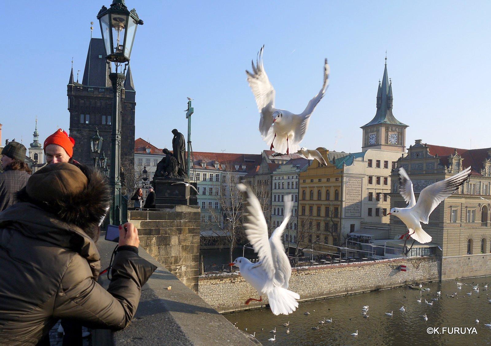 プラハ 7   カレル橋はいつも満員!_a0092659_2334671.jpg