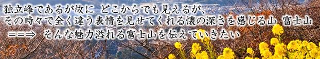 c0119160_1305664.jpg