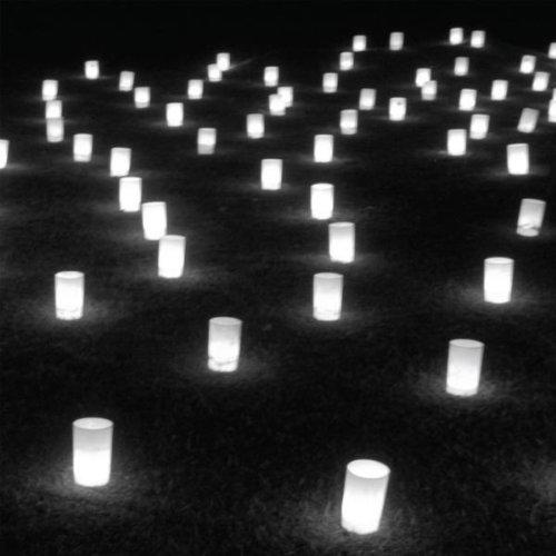 乙庭ギャラリー 生物図鑑07 カナイサワコ 「image filter」展 のBGMプレイリスト_f0191870_17555561.jpg