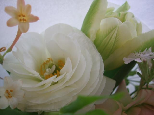 オークリーフ(ラナンキュラスの花束)_f0049672_17182070.jpg