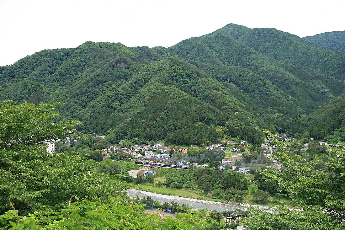 6月の緑 - 2012年・上越線 -  _b0190710_22155276.jpg