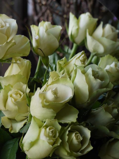 お花ツアー。_b0116313_22423832.jpg