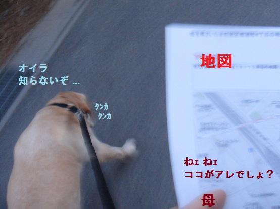 b0226221_8271843.jpg