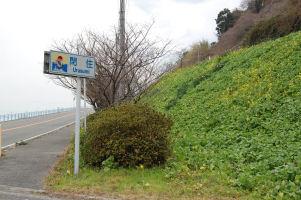 菜の花のある風景_c0034228_18335178.jpg