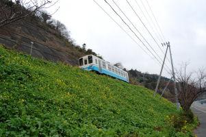 菜の花のある風景_c0034228_18341265.jpg