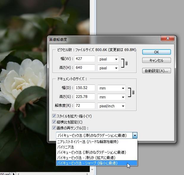 リサイズ・ツールを使用した場合_d0138130_0133260.jpg