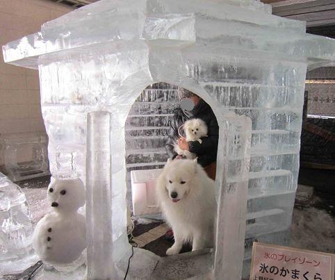 氷の彫刻_b0177436_20543953.jpg