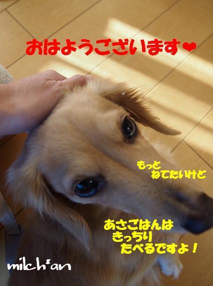 b0115642_17331252.jpg