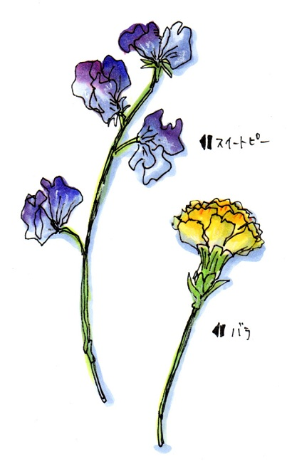 f0223661_1657149.jpg